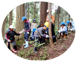 森づくり体験