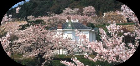 鳥取市画像0